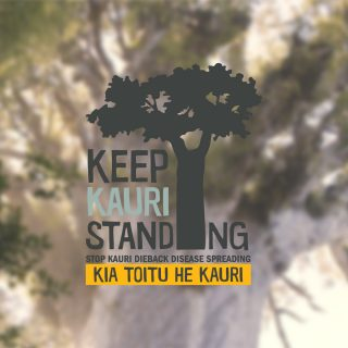 Keep Kauri Standing logo with Tane Mahuta in the background out of focus
