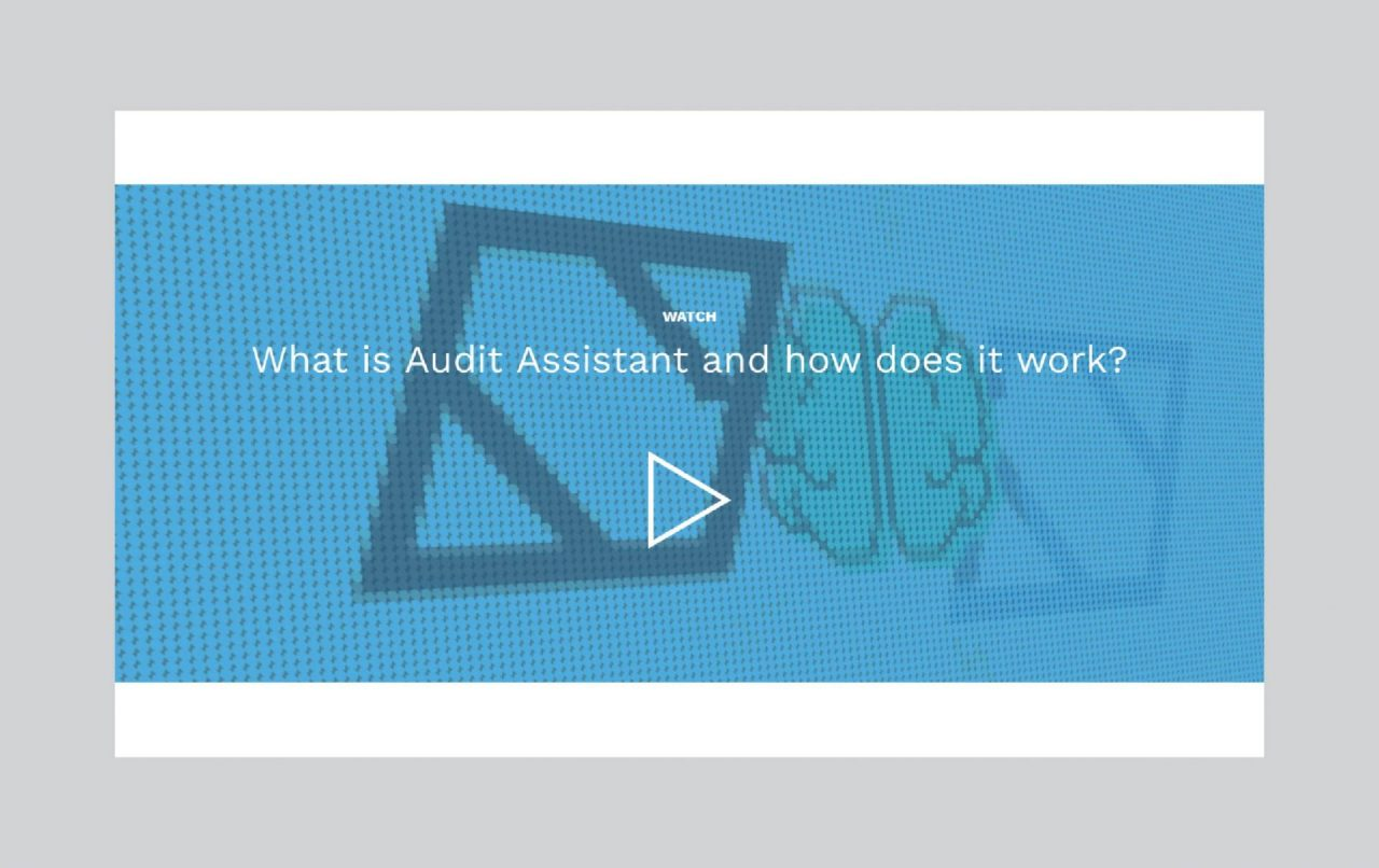 Screenshot of Audit Assistant website